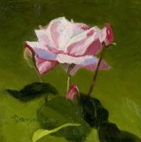 pinkrosenbuds