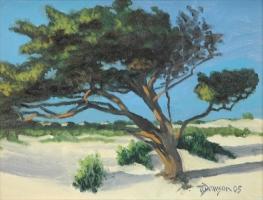 windswepttree